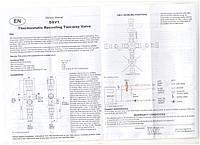 """Защитное устройство от перегрева котла Regulus DBV 1-02 3/4"""""""