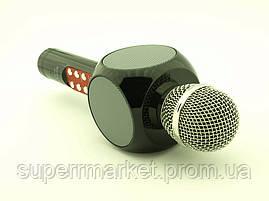 Karaoke Wster WS-1816 LED, микрофон с караоке, черный, фото 2