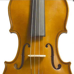 Акустическая скрипка 3/4 STENTOR 1500/C STUDENT II VIOLIN OUTFIT 3/4, фото 2