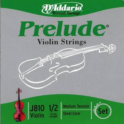 Струны для скрипок, включая модели с магнитными  и пъезо звукоснимателями D`ADDARIO J810 1/2M Prelude 1/2M, фото 2