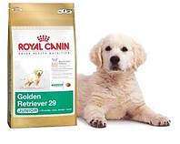 КОРМ ROYAL CANIN (РОЯЛ КАНИН) GOLDEN RETRIEVER JUNIOR для щенков Голден ретривера до 15 месяцев 1 кг