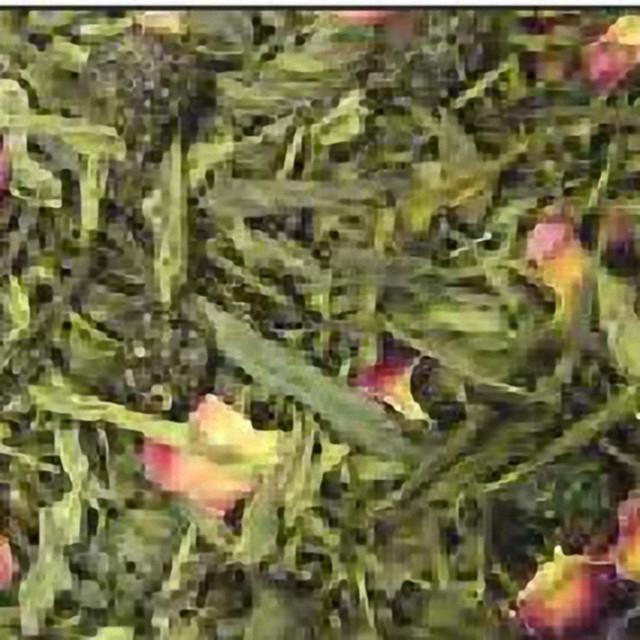 """Зелений ароматизований чай """"Шерімойя"""""""