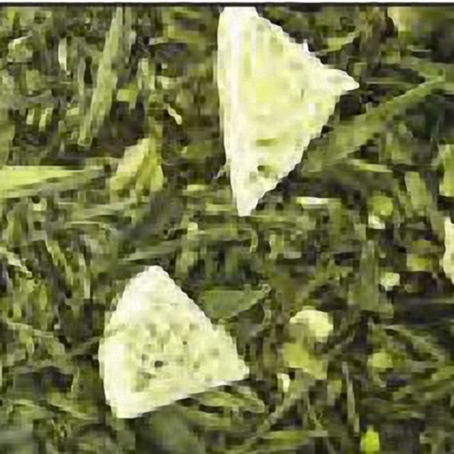 "Зелений ароматизований чай ""Лемон-пай"""
