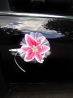 Лилии Нежность розовая ( на присосках )