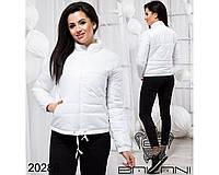 db6775a4cdd Весенняя короткая женская куртка Фабрика Украина Прямой поставщик интернет-магазин  одежды 42-46