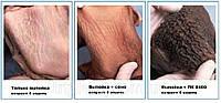 Бест Микс Старт 8401 для телят от 3-до 6 месяцев, 100% ввода, мешки по 25 кг