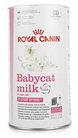 Royal Canin (Роял Канин) BABYCAT MILK  заменитель кошачьего молока для котят от рождения до отъема 0.3 кг
