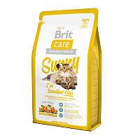 Корм для кошек котов Brit Care Cat (Брит кеа кэт) красота кожи и шерсти с мясом лосося и риса 2 кг