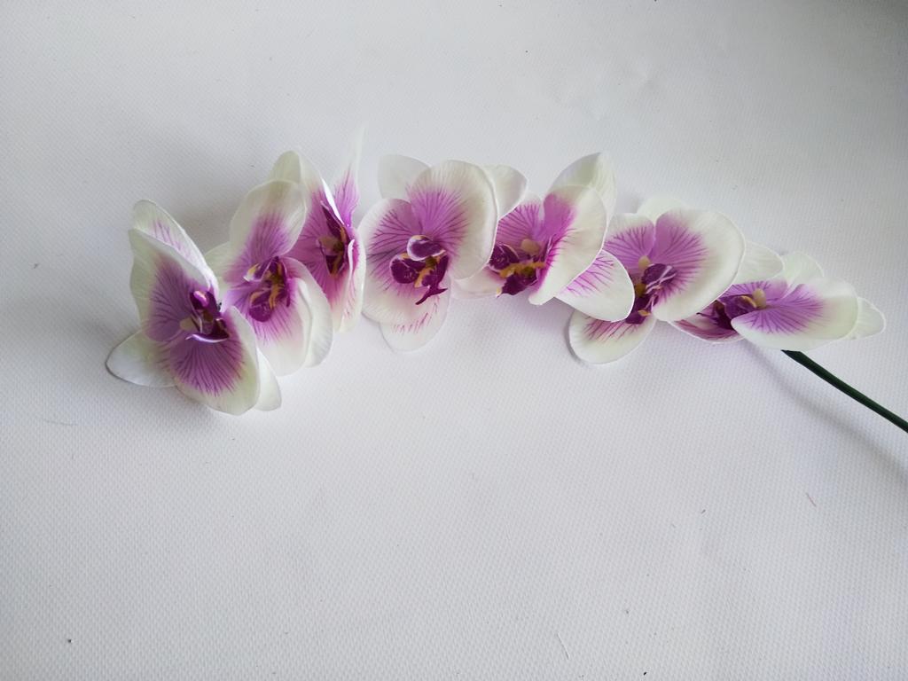 Ветка орхидеи белая с фиолетовой серединкой