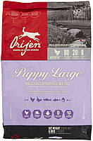 Корм Orijen (Ориджен) Puppy Large Breed  для щенков крупных пород, 11,4 кг