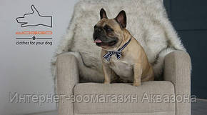 Doggo Бабочка для собаки