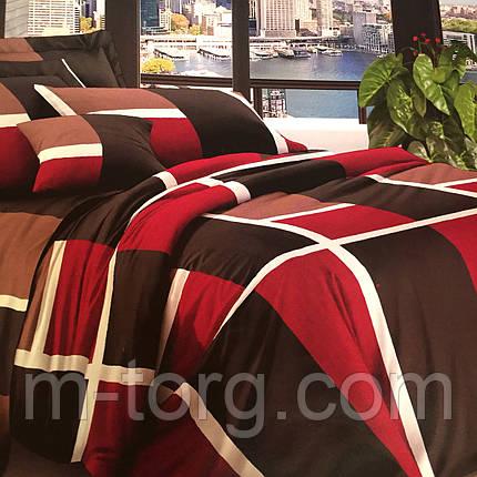 Комплект постельного белья евро размер 200/220,простынь 220/240,нав-ки 70/70,ткань поплин 100% хлопок клетка, фото 2