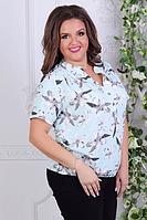 Блузка женская ( супер софт; р-ры 50 - 56 ), фото 1