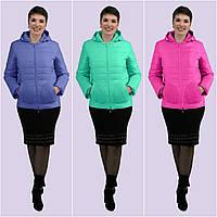 Женская демисезонная куртка. Модель 165. Размеры 44-58 46