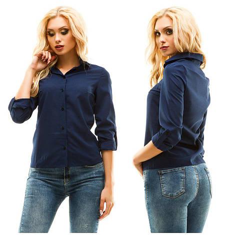 Блуза ел246