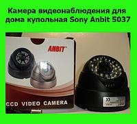 Камера видеонаблюдения для дома купольная Sony Anbit 5037