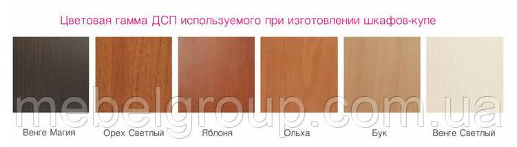 Шафа купе Стандарт 170*45*210 Вільха, фото 2