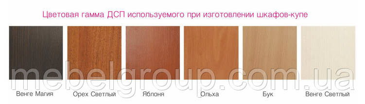 Шафа купе Стандарт 210*45*210 Вільха, фото 2