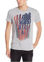 Футболка мужская серая Hanes с принтом флага США