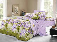 Двуспальное постельное белье полиСАТИН 3D (поликоттон) 851634