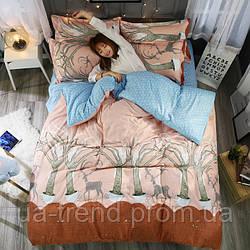 Яркое постельное белье евро размер