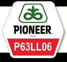 Насіння соняшник П64ЛЛ06 /P64LL06