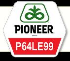 Насіння соняшник P64LE99 Круизер