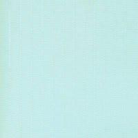 Жалюзи вертикальные ЛАЙН 6005  светло-голубой 127 мм.