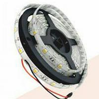 Лента LED RIGHT HAUSEN IP54 SMD 5050 червона