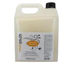 Profisalon Шампунь для сухих и поврежденных волос с аргановым маслом, 5000 мл