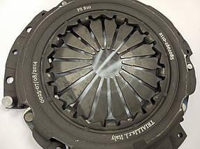 Корзина (2112) гола TRIALLI, фото 2