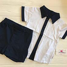 Комплект для мальчика (шведка+шорты) 517-110 92р
