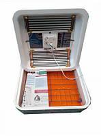 Інкубатор для яєць Рябушка 2 70, ручної переворот, аналоговий регулятор, тен, фото 1