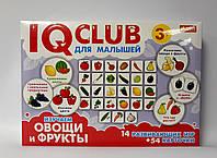 """Развивающая игра IQ Club Для малышей """"Овощи и фрукты"""" 13152040Р/6353 Ранок Украина"""