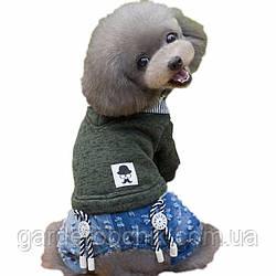 """Комбинезон, костюм  """"Тройка"""", толстовка для собаки. Одежда для собак"""