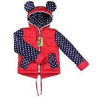 Куртки детские весенние для девочек с ушками, фото 1
