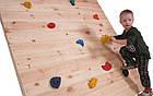 Скалодром дитячий великий, набір зацепів для скалодрому 5 шт розмір L, фото 7
