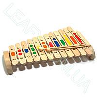 Ксилофон на 12 тонов, МДИ, фото 1
