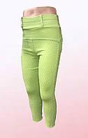 Треггинсы для девочек в расцветках (1004/16), фото 1