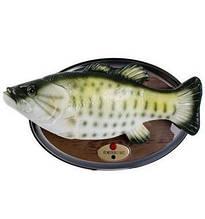 Поющая рыба Карп Билли Басс