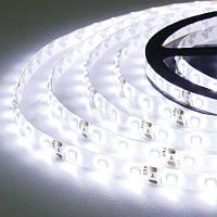 LED лента Biom 12V SMD3528 60led/m 4,8W IP65 Белый