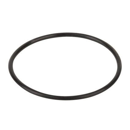 Kripsol Прокладка-кольцо корпуса насоса КА/КАР Kripsol RKA220.R/ RBH0017.00R