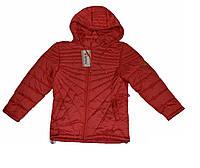Куртка демисезонная, коралловый цвет, 128 на 6 -7 лет, фото 1