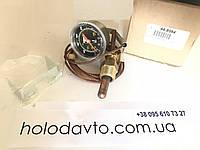 Датчик температуры воды Thermo King KDII / MDII / RDII / TDI ; 44-8984