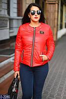 Куртка (50-52, 52-54, 54-56, 56-58) — купить оптом и в розницу в о