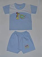 Песочник для мальчика Майка и шорты Жираф лев 2(р) 3-6 мес. рост 68-74, фото 1