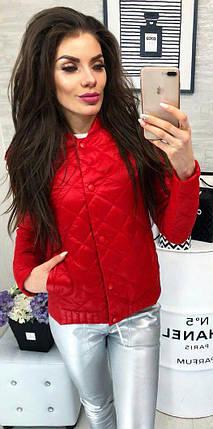 cdbf27357a8 Купить Женская демисезонная куртка Весна Осень (синтепон 150) от ...