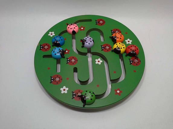 ОдСв Дерево Лабиринт Жуки (бродилка круглая в коробке) BT-WT-0136, фото 2