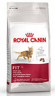 Корм Royal Canin (Роял Канин) FIT 32 для кошек бывающих на улице 4 кг