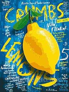 "Картина по номерам 30*40см, акрил, ""Лимон"" AS0213 без коробки"